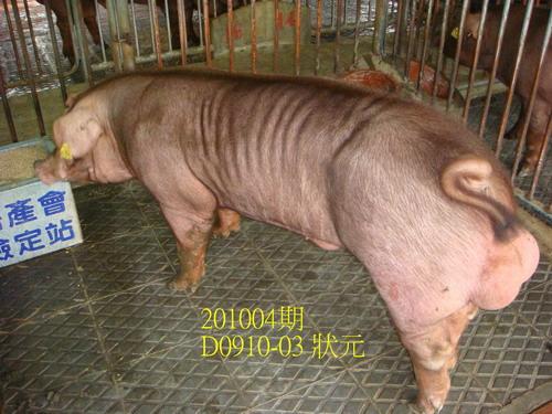 中央畜產會201004期D0910-03拍賣照片