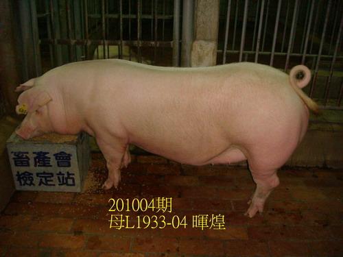 中央畜產會201004期L1933-04拍賣照片