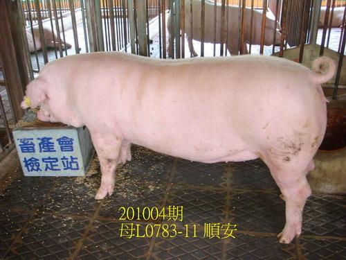 中央畜產會201004期L0783-11拍賣照片