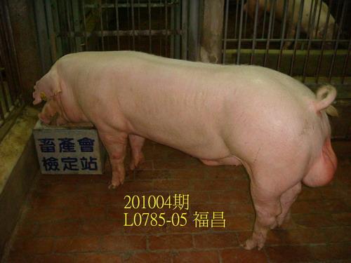 中央畜產會201004期L0785-05拍賣照片