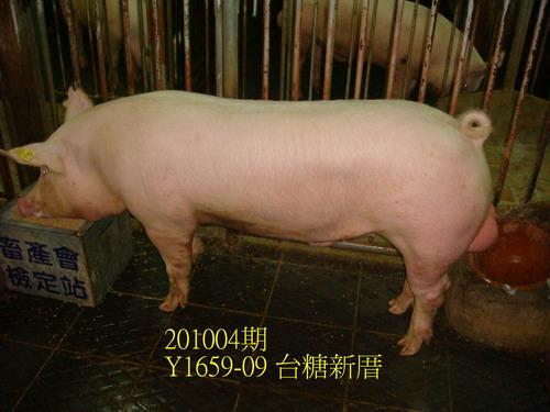 中央畜產會201004期Y1659-09拍賣照片