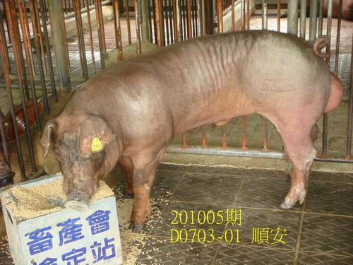 中央畜產會201005期D0703-01拍賣照片