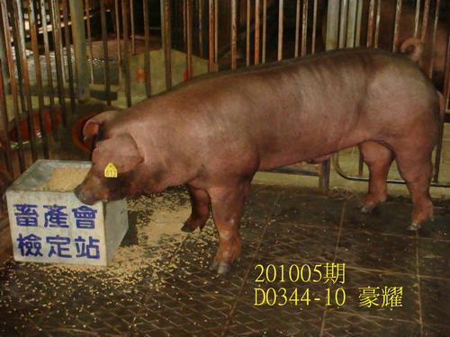中央畜產會201005期D0344-10拍賣照片
