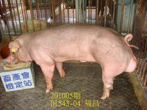 中央畜產會201005期D1543-04拍賣照片