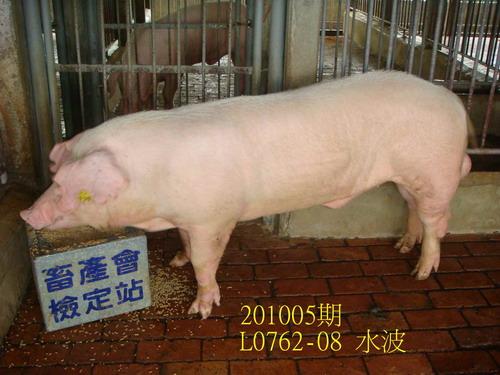 中央畜產會201005期L0762-08拍賣照片