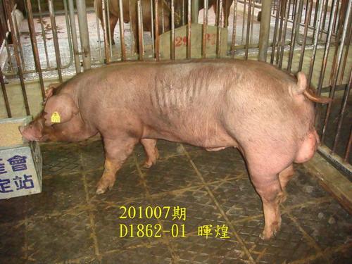 中央畜產會201007期D1862-01拍賣照片