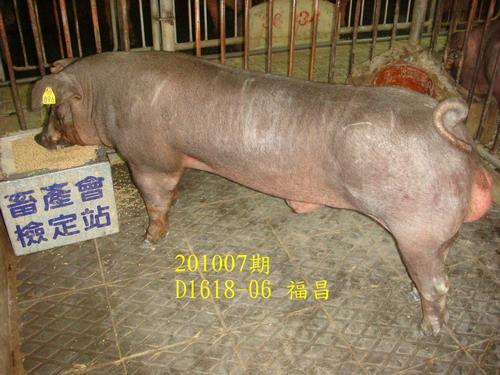 中央畜產會201007期D1618-06拍賣照片