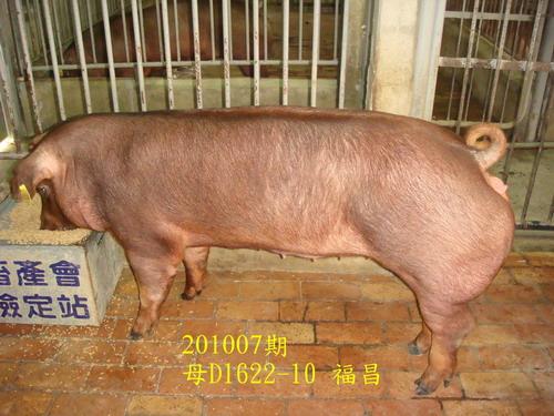 中央畜產會201007期D1622-10拍賣照片