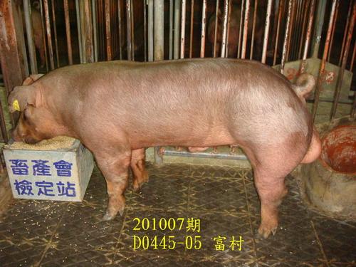 中央畜產會201007期D0445-05拍賣照片