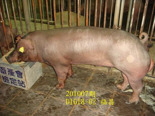 中央畜產會201007期D1618-02拍賣照片