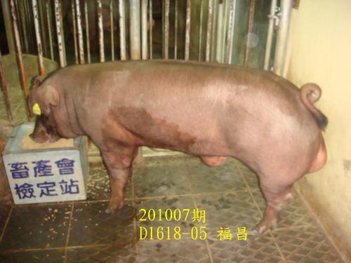 中央畜產會201007期D1618-05拍賣照片