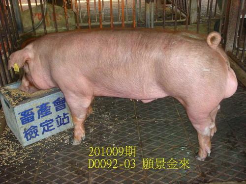 中央畜產會201009期D0092-03拍賣照片