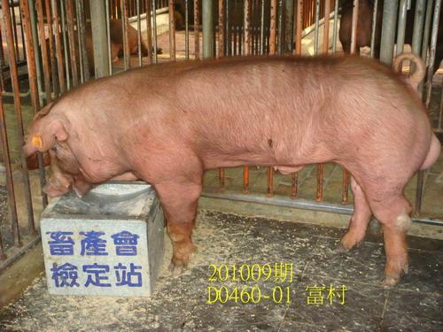 中央畜產會201009期D0460-01拍賣照片