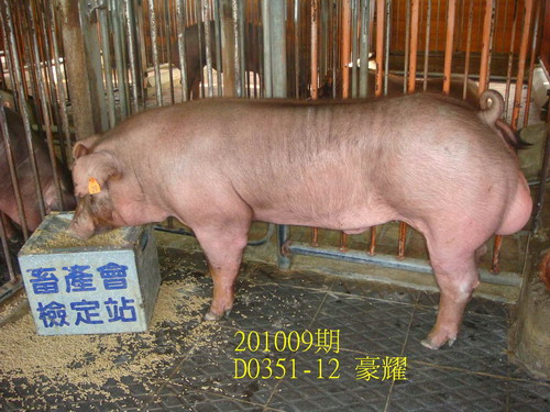 中央畜產會201009期D0351-12拍賣照片