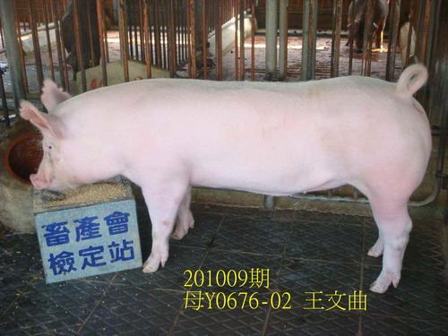 中央畜產會201009期Y0676-02拍賣照片