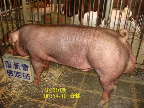 中央畜產會201010期D0354-10拍賣照片