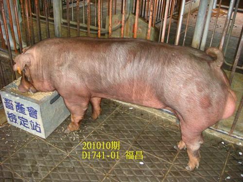 中央畜產會201010期D1741-01拍賣照片