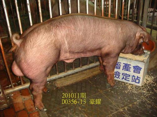 中央畜產會201011期D0356-13拍賣照片