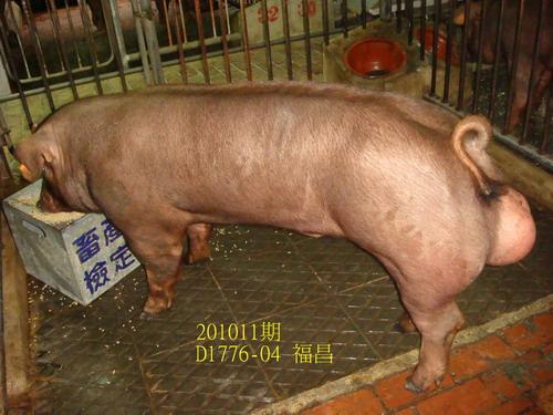 中央畜產會201011期D1776-04拍賣照片