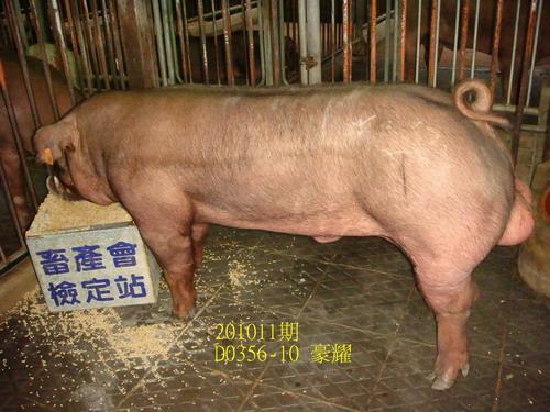 中央畜產會201011期D0356-10拍賣照片