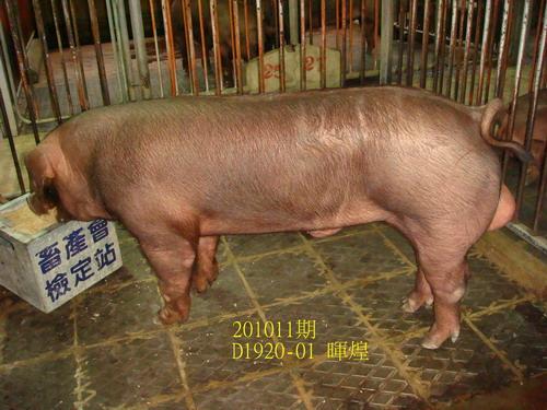 中央畜產會201011期D1920-01拍賣照片