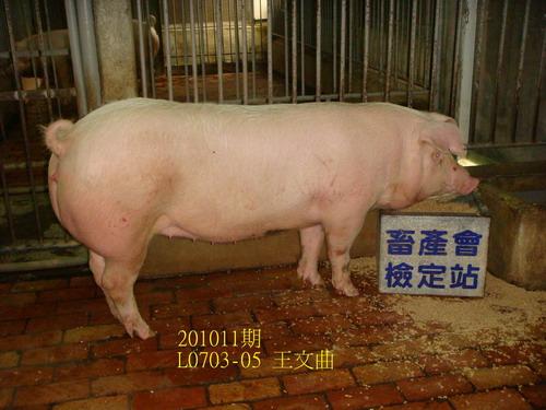 中央畜產會201011期L0703-05拍賣照片