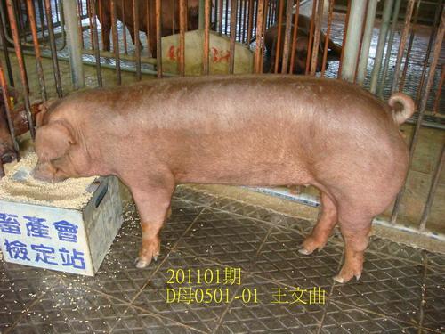 中央畜產會201101期D0501-01拍賣照片