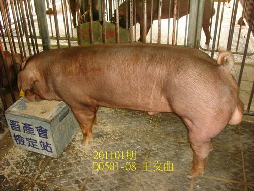 中央畜產會201101期D0501-08拍賣照片