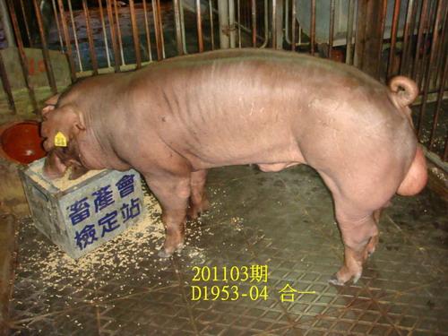 中央畜產會201103期D1953-04拍賣照片