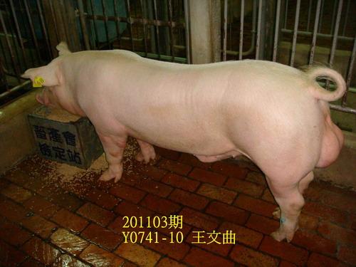 中央畜產會201103期Y0741-10拍賣照片