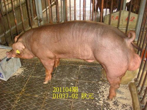 中央畜產會201104期D1037-02拍賣照片