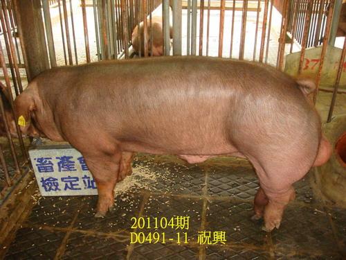 中央畜產會201104期D0491-11拍賣照片