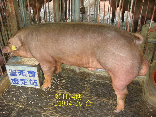 中央畜產會201104期D1994-06拍賣照片