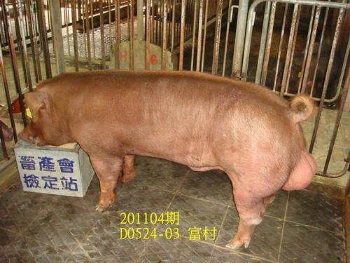 中央畜產會201104期D0524-03拍賣照片