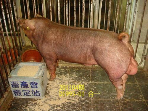 中央畜產會201104期D1993-01拍賣照片