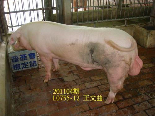 中央畜產會201104期L0755-12拍賣照片
