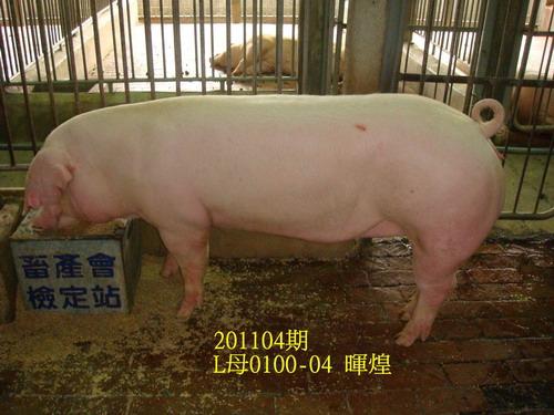 中央畜產會201104期L0100-04拍賣照片