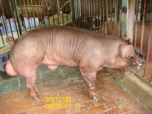 中央畜產會201105期D0058-03拍賣照片