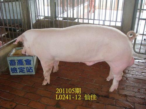 中央畜產會201105期L0241-12拍賣照片