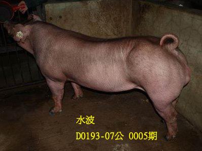 台灣動物科技研究所竹南檢定站10005期D0193-07拍賣相片