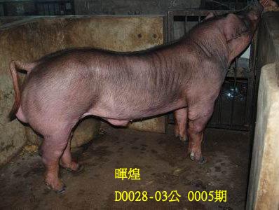 台灣動物科技研究所竹南檢定站10005期D0028-03拍賣相片