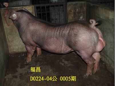 台灣動物科技研究所竹南檢定站10005期D0224-04拍賣相片