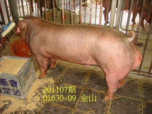 中央畜產會201107期D1630-09拍賣照片