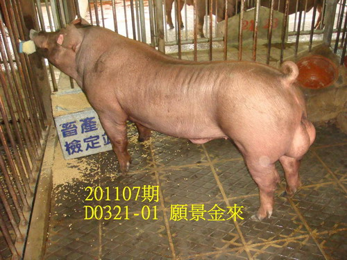 中央畜產會201107期D0321-01拍賣照片