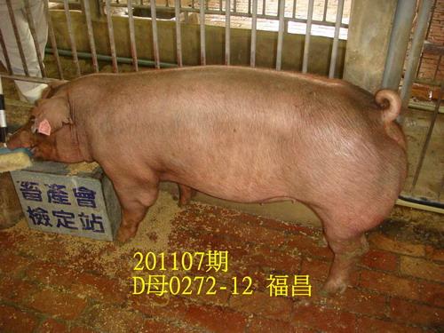 中央畜產會201107期D0272-12拍賣照片
