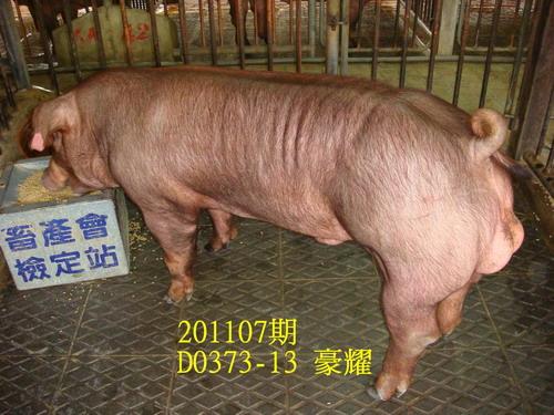 中央畜產會201107期D0373-13拍賣照片