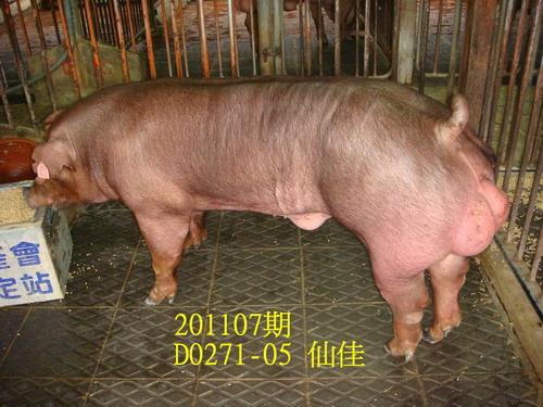 中央畜產會201107期D0271-05拍賣照片