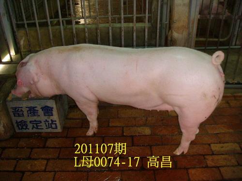 中央畜產會201107期L0074-17拍賣照片