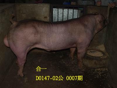 台灣動物科技研究所竹南檢定站10007期D0147-02拍賣相片