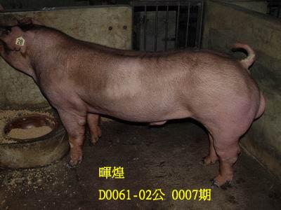 台灣動物科技研究所竹南檢定站10007期D0061-02拍賣相片